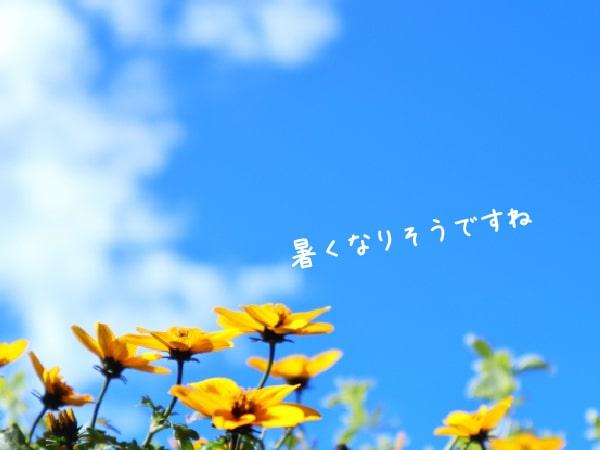 210607_01-min.jpg